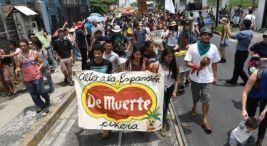 Marcha contra la expansión piñera. 15 mayo 2017. Foto: Semanario Universidad.