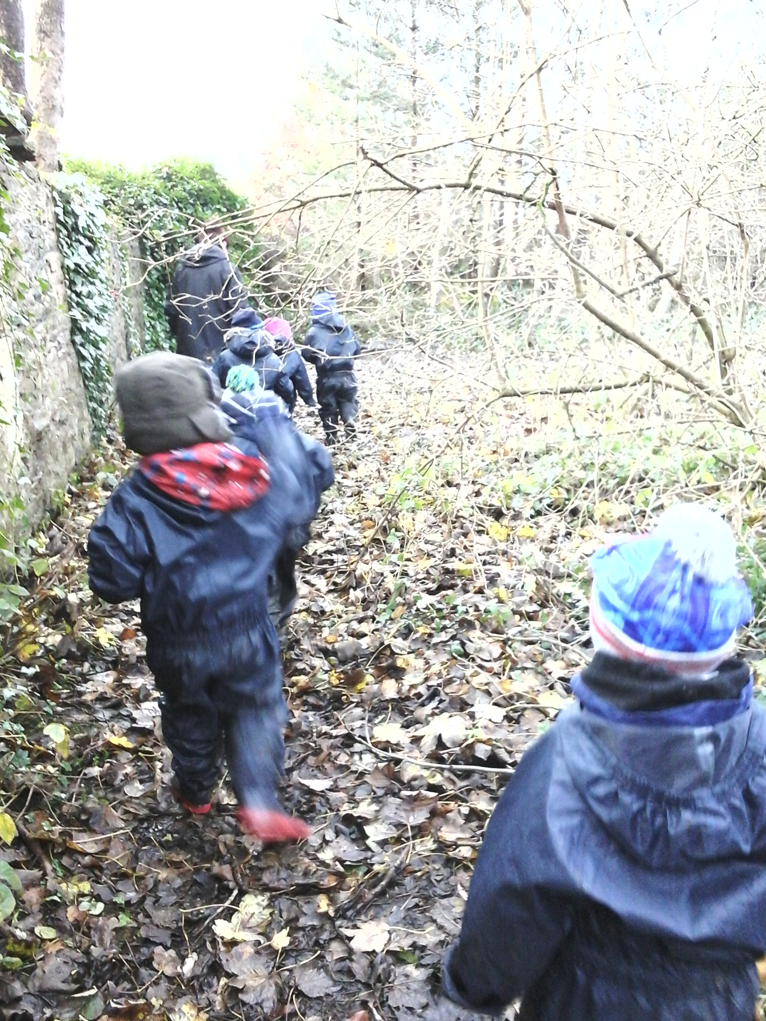 BCFC WCFC Forest School 27.11 (29)