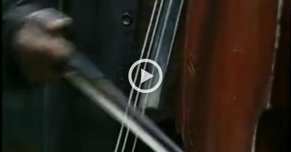 Instrumente muzicale traditionale romanesti cordofone si de percutie (Documentar)