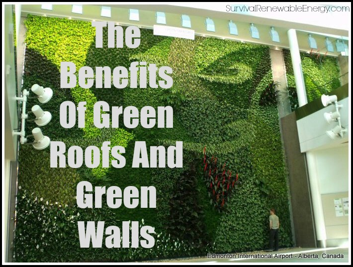 the benefits of green roofs and green walls. Black Bedroom Furniture Sets. Home Design Ideas
