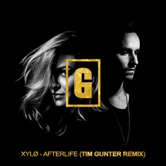 xylo-afterlife-tim-gunter-remix