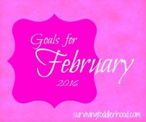 Goals for February 2016