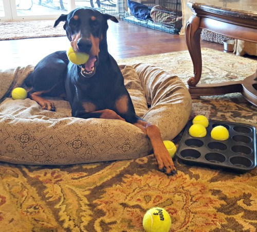 Missie Tennis Ball Game