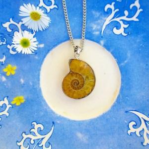 ammonite sustainable daisy thrifting sustainability environmental ecofashion ethical fashion