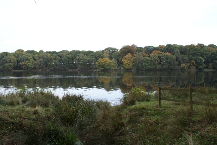 Autumnal view over Mere Lake at Tatton Park