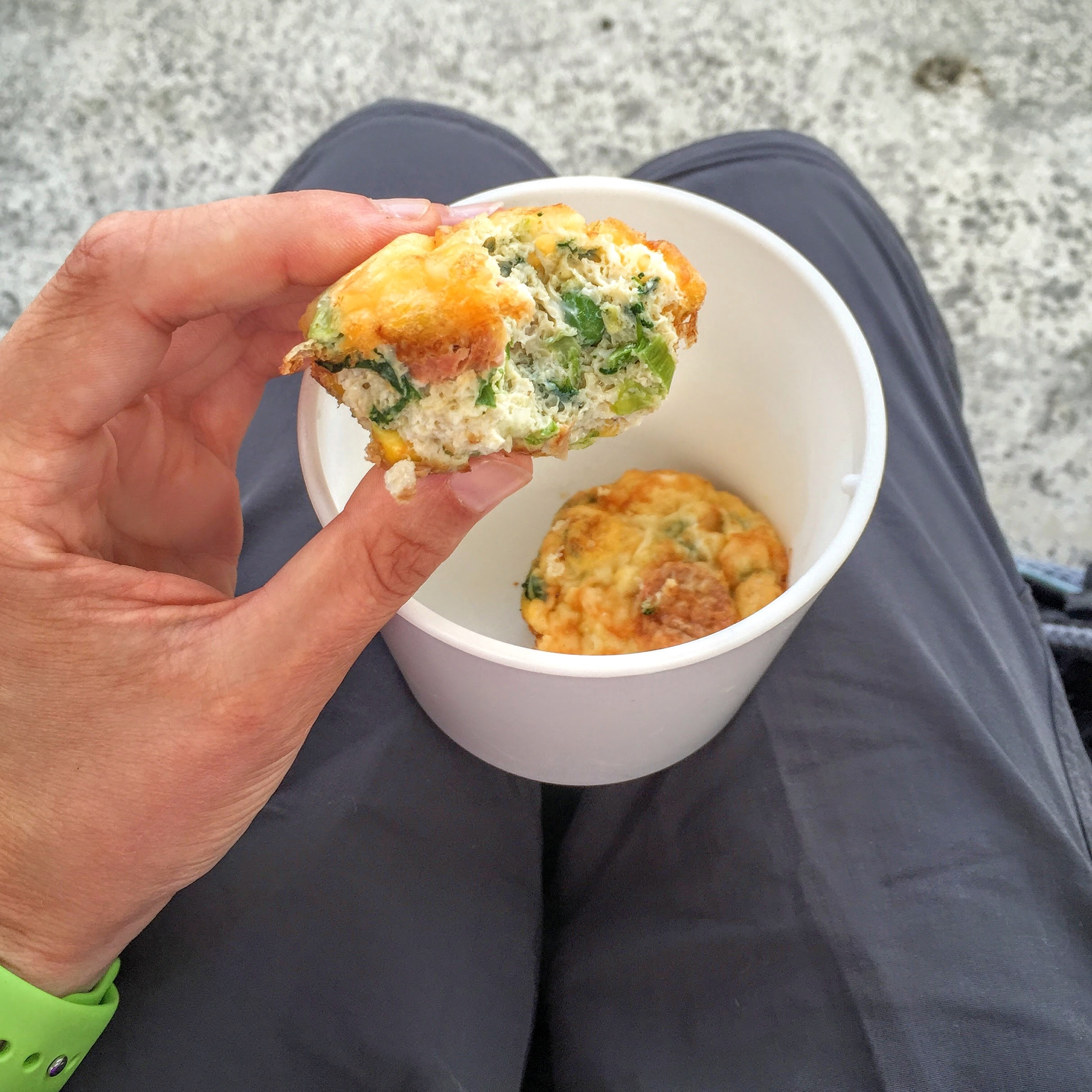 Breakfast omelette muffins susty meals the sustainable and money an added bonus is that you can freeze them and bring them out as and when you need them forumfinder Images