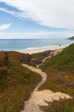 California beach path