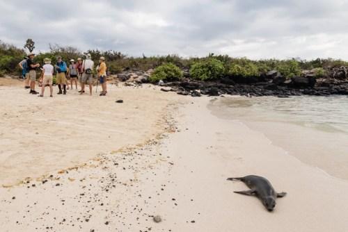 Guests Touring Santa Fe Island