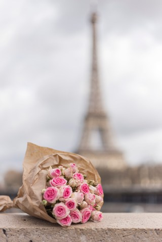 Romantic pink roses with Eiffel Tower