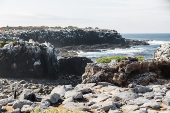 Espanola Island in Galapagos National Park