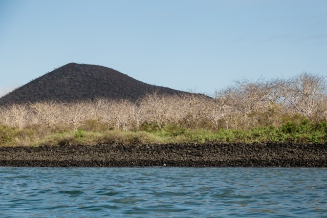 Floreana Island in Galapagos National Park