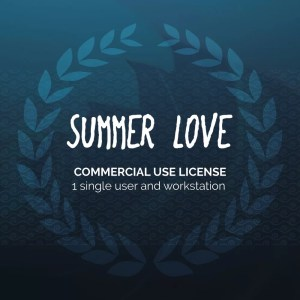 svnprod-graphiste-dijon-font-summerlove-license