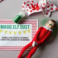 Elf on a Shelf Magic Dust Printable