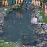 Turtle River Park - Turtle Pond