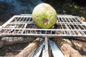 Two Jamaican Breadfruit Recipes