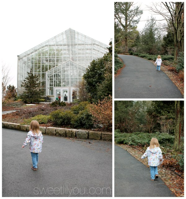 Rainy Day visit to the Roger Williams Park botanical Center