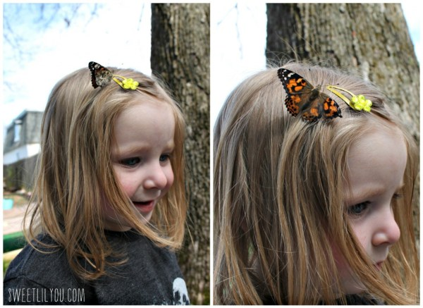 A Painted Lady Butterfly on Avery's head.