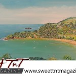 Artist Cliff A Birjou, Parlatuvier Beach, Sweet T&T, Sweet TnT, Trinidad and Tobago, Trini, vacation, travel
