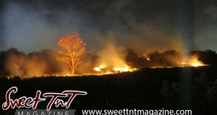 Dangerous beauty of a bushfire by Nadia Ali in Sweet T&T, Sweet TnT Magazine, Trinidad and Tobago, Trini, vacation, travel