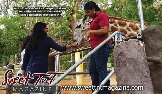 Katrina Khan and Candida Khan feed giraffes Melman and Mandela, at Emperor Valley Zoo, Sweet T&T, Sweet TnT, Trinidad and Tobago, Trini, vacation, travel, petting
