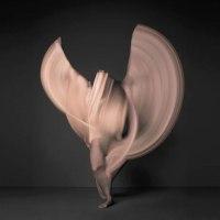Sweeping Nude Photography by. Shinichi Maruyama