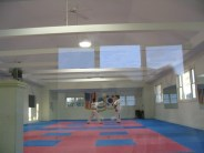 Afternoon light reflects in the lobby window, which looks into the dojang's main training area.