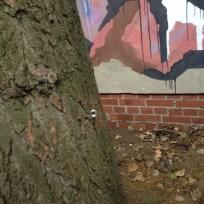 Mutterbaum ..