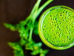 Parsley, Green Apple, Wheatgrass Juice