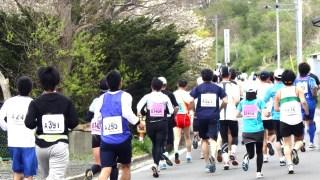 名古屋ウィメンズマラソン2016 芸能人の出場&結果を大調査!意外な人が!?