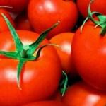トマトの栄養リコピンは美肌効果抜群!上手な選び方【林修の今でしょ講座】