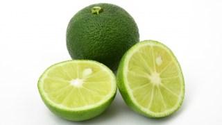 【ジョブチューン】薬味レシピ『すだちそうめん』肥満の予防改善に効果的!