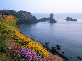 光海君が流された済州島の風景