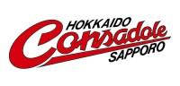 コンサドーレ札幌の2015年度通期業績は増収減益