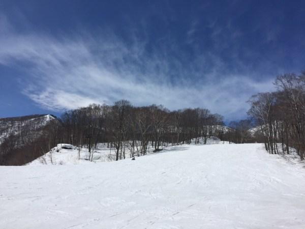 """栂池高原スキー場  """"白馬連峰を眺めるスキー"""""""