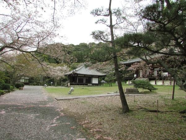 和歌山 根来寺 国宝の大塔