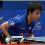 Xue Fei (薛飛) vs Kizukuri Yuto (木造勇人) (WJTTC 2017) CHINA VS JAPAN FINAL