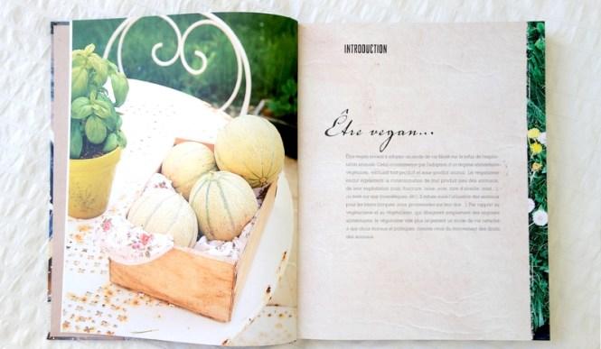 Blog Tache de Rousseur - Saveurs Vegan - Ellen Frémont (livre de cuisine vegan saine et gourmande au quotidien) 1
