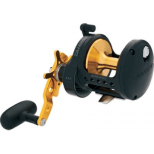 Daiwa Saltist Black Gold Conventional Reel