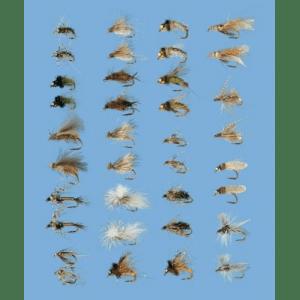 Cabela's 36-Piece Caddis Assortment - Translucent