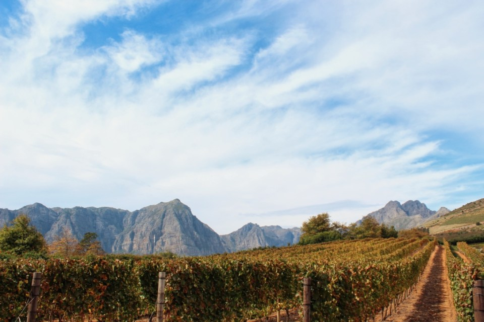 Stellenbosch view at Delaire Graff