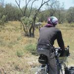 ケニアヘルズゲートでサイクリングサファリ (27)