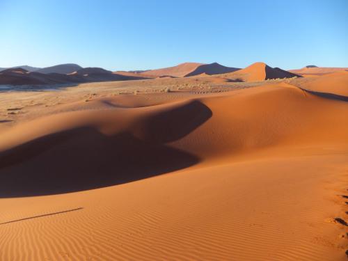 ナミビアナミブ砂漠1 (3)