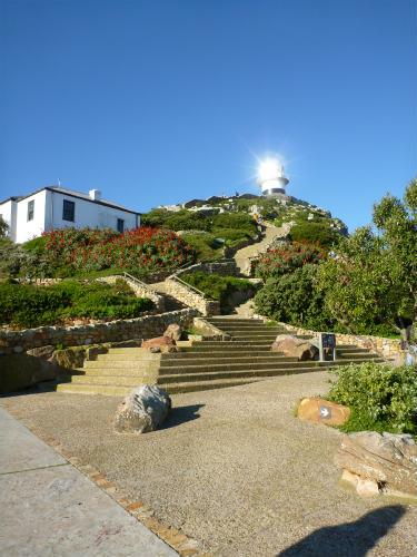 南アフリカ喜望峰 (24)