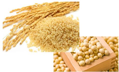 大豆と玄米