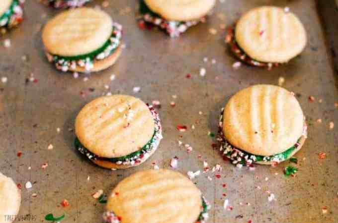 #SpreadCheer with Christmas Cookies and Peppermint Sandwich Cookies! Sugar cookies filled with frosting and rolled in crushed candy canes! Peppermint Sandwich Cookies Recipe | Take Two Tapas
