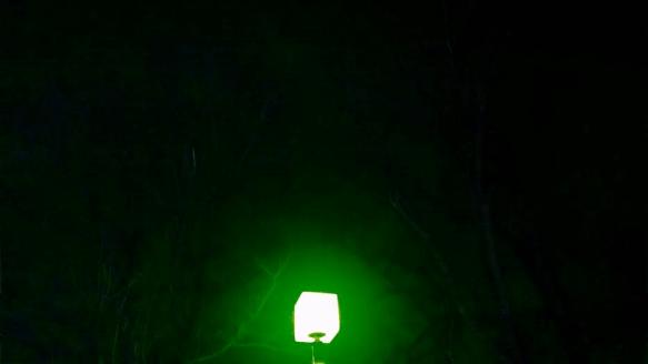 green pic