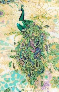 peacock1