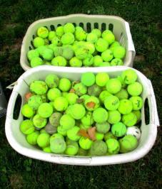 tennis balls comp