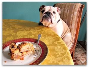 Jeanette's Best Easy Apple Pie