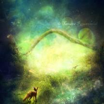 Little fox grand adventure